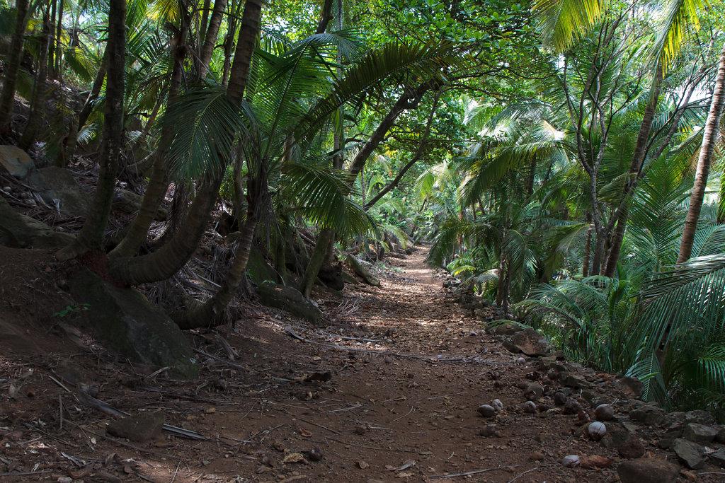 French Guiana 31